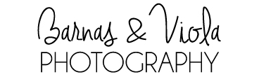 Corporate, Family, and Wedding Photographer | Switzerland | Geneva | Lausanne | Vevey | Montreux | Alps | Zurich | Bern | Basel | Lake Como | St. Moritz