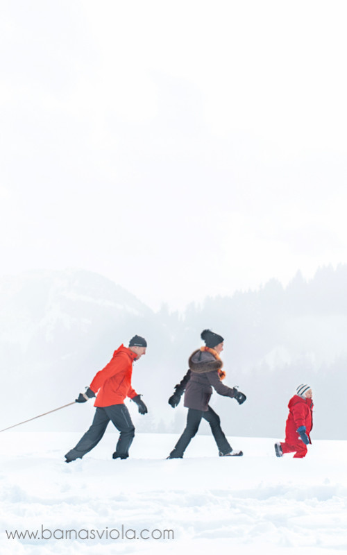 Switzerland Family Photography