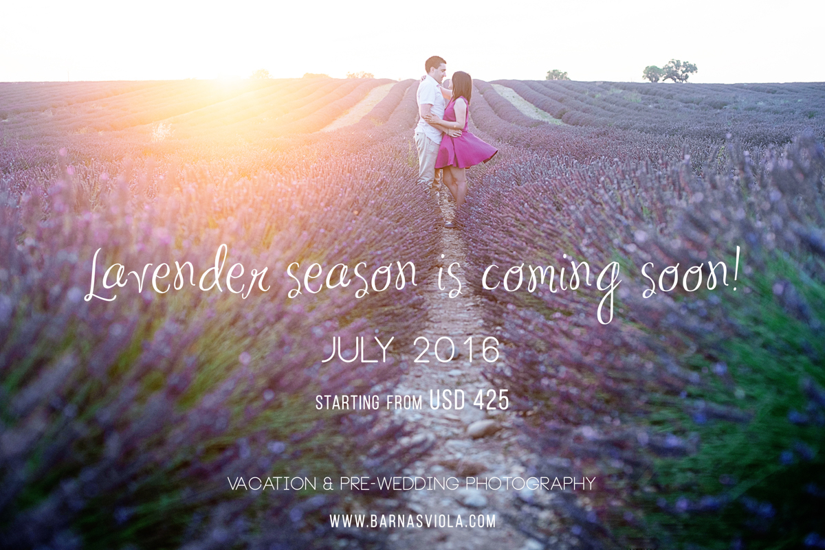Europe France Lavender Prewedding Engagement Photographer
